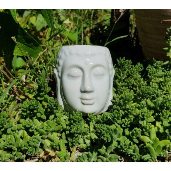 Buddhafej mécsestartó, párologtató
